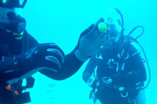 ギョギョ魚!水中で卵を割ってみたら驚きの結果に!