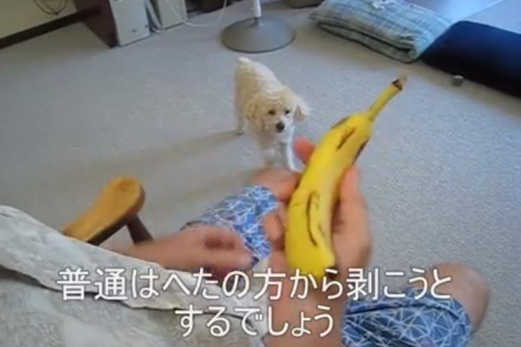 【目からウロコ】驚くほど簡単で美しいバナナの剥き方