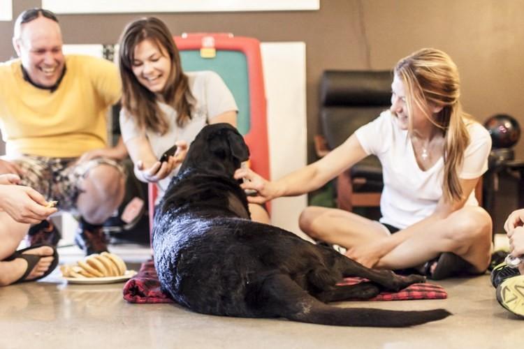 全身ガンに蝕まれ最後の一日を最愛の家族と過ごした犬デューク