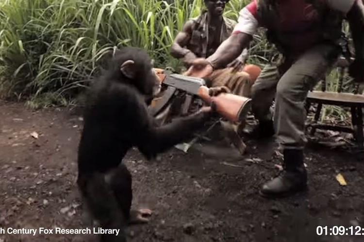 【衝撃映像】猿にアサルトライフルを渡した結果とんでもない事態に!!