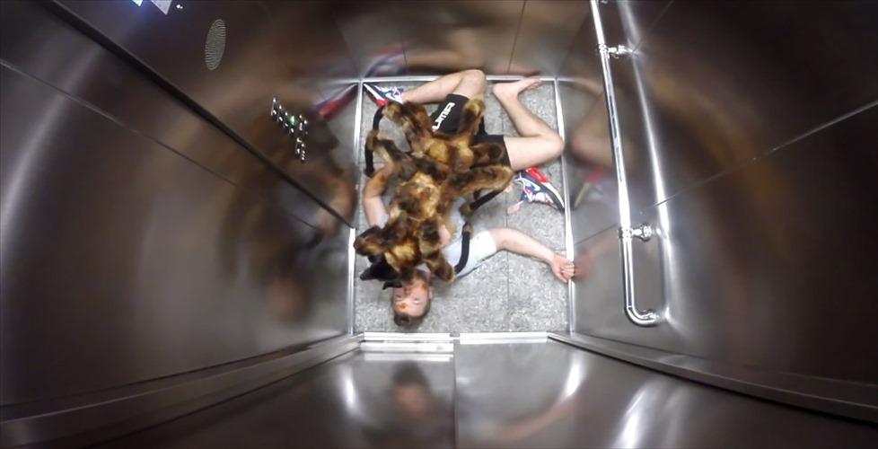 【どっきり】エレベーターで巨大蜘蛛に襲われた!?と思ったら、ただの愛嬌のある●●だった