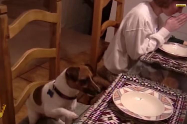 「神のご加護をアーメン」家族でお祈り中にワンコがとった行動とは?