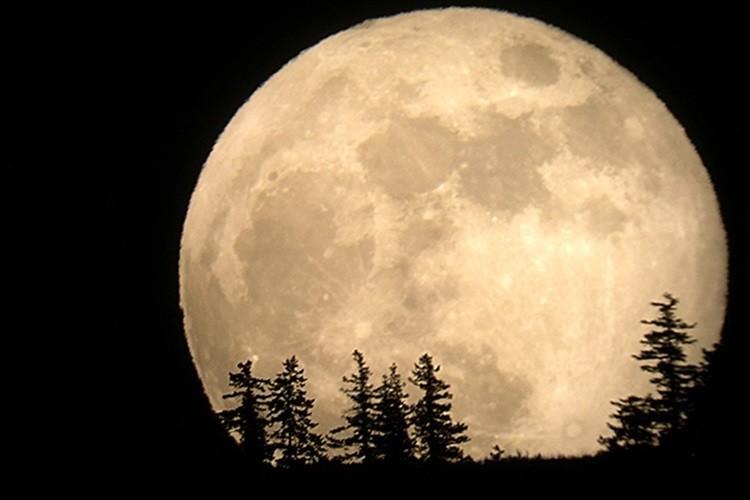 """9月9日は今年最後の""""スーパームーン""""です。空を見上げて月を見よう!"""