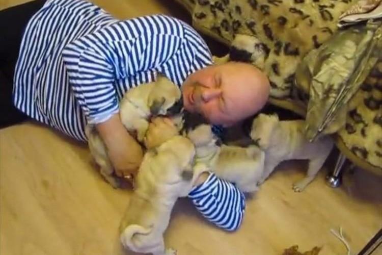 見よ!この至福の表情を。帰ってきた途端、子犬たちに囲まれるご主人様が羨ましすぎる