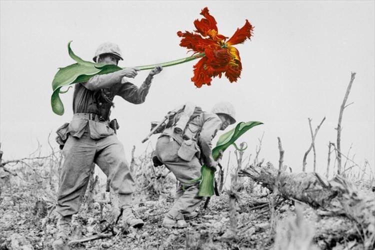 こんな世界ならいいな。武器をお花に変えてみたらとっても平和になった素敵な画像