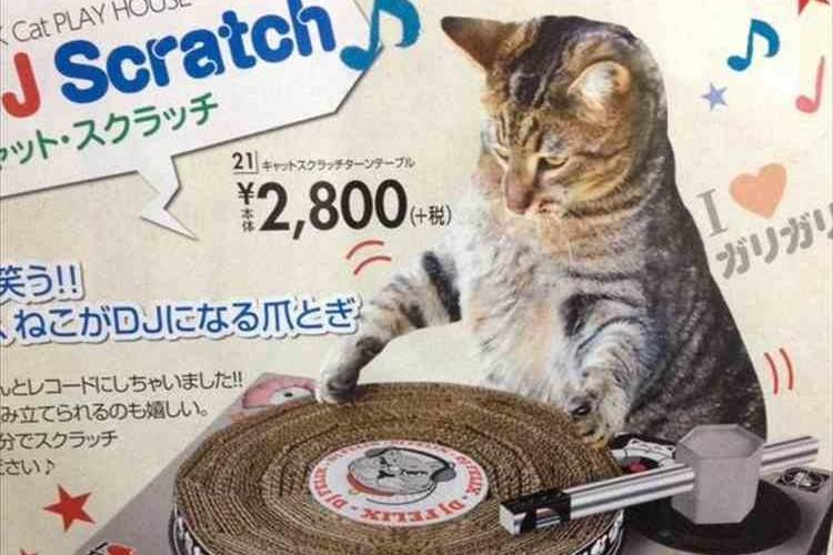 DJネコ「チェケラ!」ターンテーブル型爪研ぎがとんでもニャイと話題に!