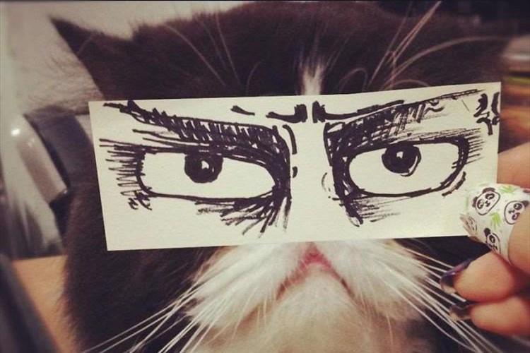 """紙とペンがあればすぐにできる日本初の""""猫モンタージュ""""が海外でも話題に!"""