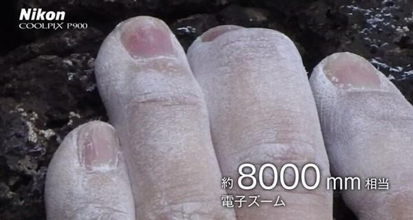 fd300081r