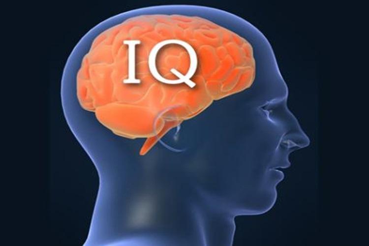 【情報処理能力】見るだけでIQが高いか、そうでもないかを判定できる映像が話題に