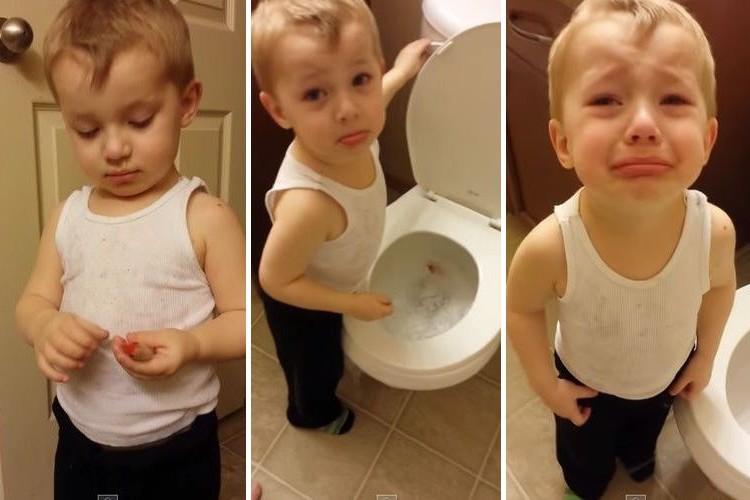 「飼っていた金魚が死んじゃった...」トイレに流したあと命の大切さを知った少年