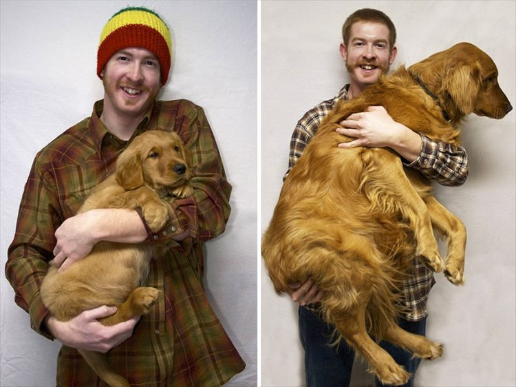XX-before-and-after-dogs-growing-up-6__880_R