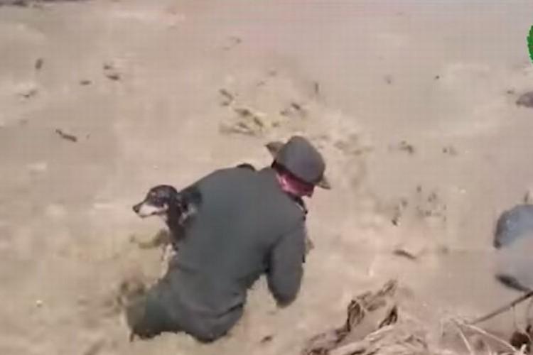 濁流に流された1匹の犬を救った警察官に世界中から賛美の声