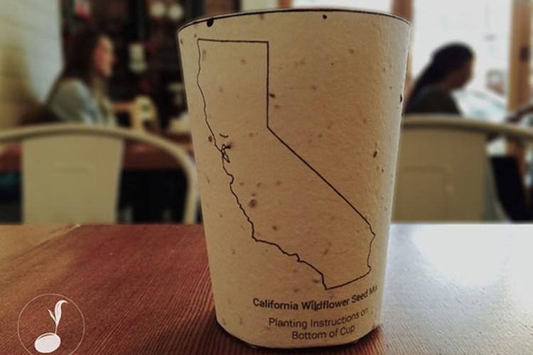 【100%エコ】土に還るコーヒーカップ、芽が育ちやがて木になる素敵なアイディア