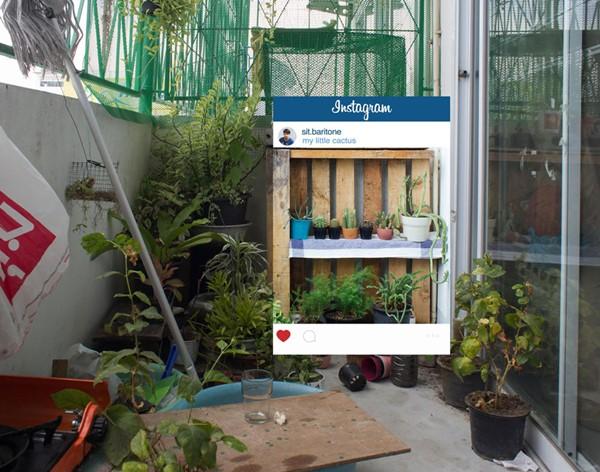 instagram-lie-photos-crop-slowlife-chompoo-baritone-10r