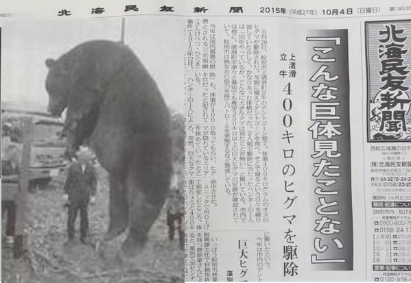 【驚愕】三毛別羆事件よりデカイ400キロの巨大ヒグマが!「こんな巨体みたことない」