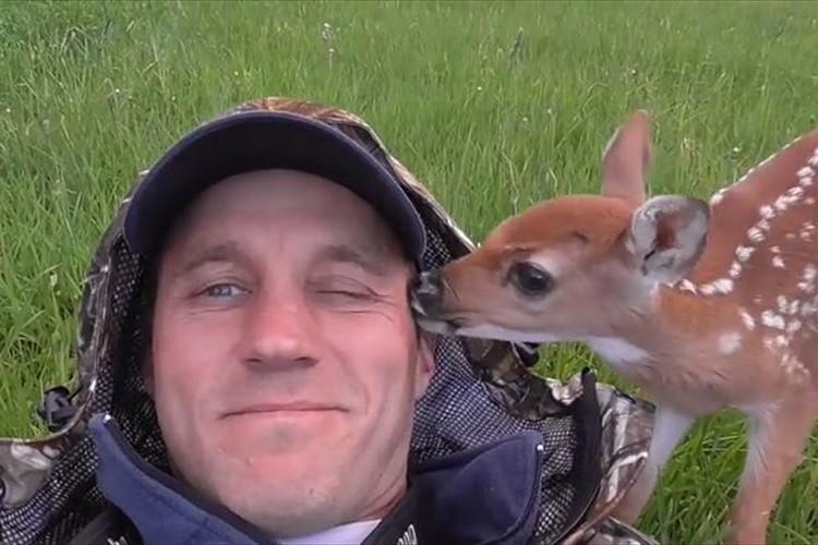 母に捨てられた子鹿…人間の優しさに助けられ、再び野生へと帰るまで