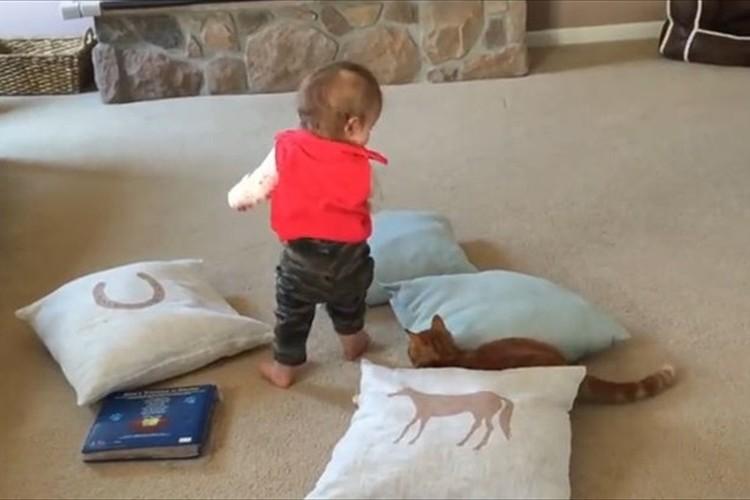 """【6秒動画】赤ちゃんに踏まれそうになる寸前に""""猫が見せた驚愕のアクション"""""""
