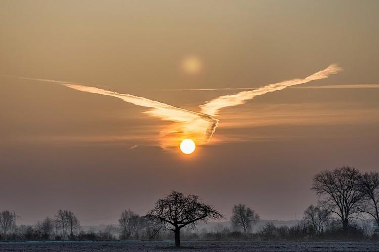 【神々しい】ドイツで撮影された1枚の朝日の画像が不死鳥のようだと話題に!