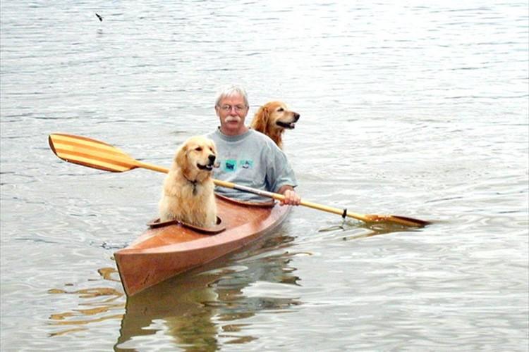 """""""大型犬2頭が乗れる特注のカヤック""""で、愛犬と冒険する男性が話題に!"""