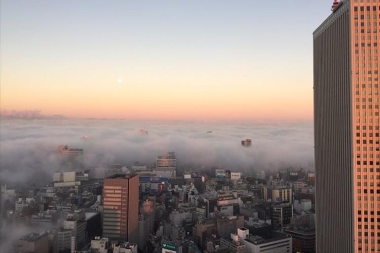 近未来のラピュタか!?東京都心部の高層ビル群が霧に包まれて幻想的な景色に!