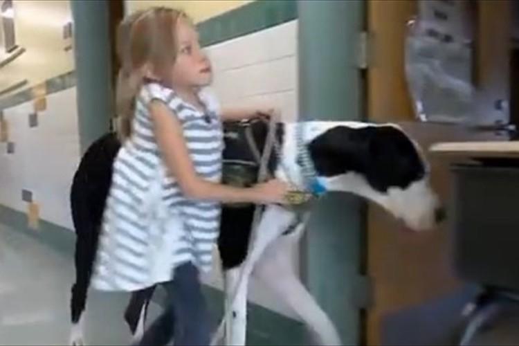 「車いすや松葉杖は、もういらない」1匹の犬との出会いが少女の人生を劇的に変えた!