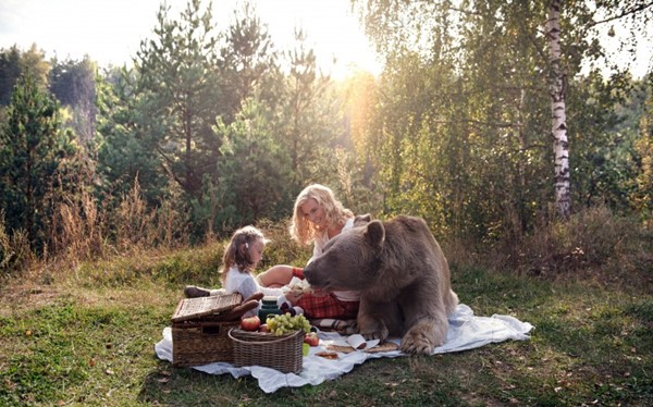 8_CATERS_TEDDY_BEAR_PICNIC_09-800x498r