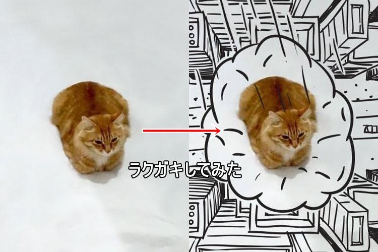 1匹の猫に落書きしてみたらいろいろ面白かった!15選