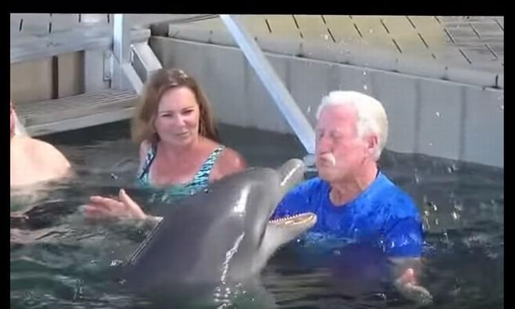 微笑ましい!イルカとおじいちゃんの水かけ遊びに思わずほっこり