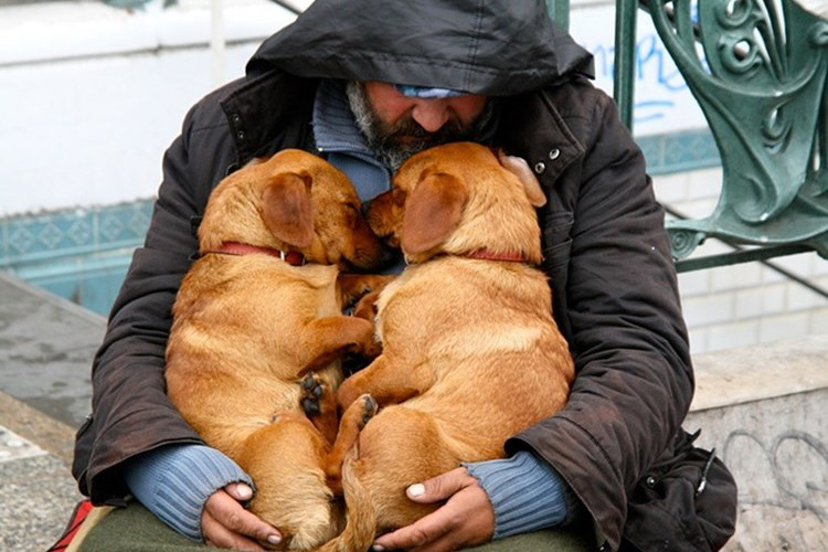 帰る家がなくてもいつも一緒にいてくれるのは相棒の犬。ホームレスの方とその愛犬の写真15選