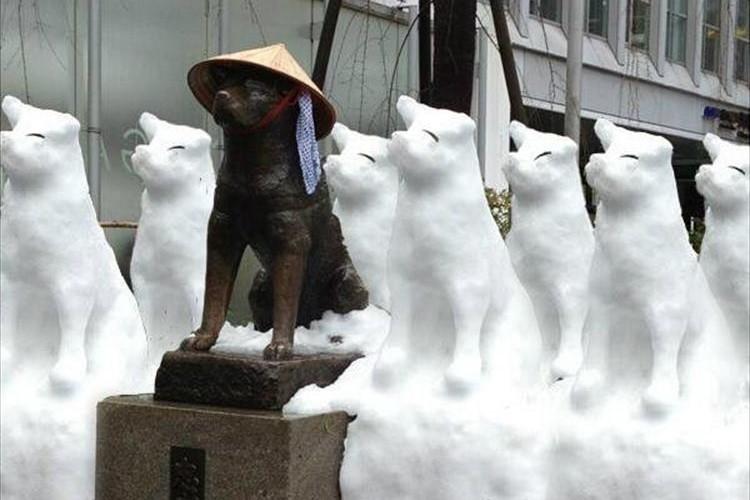 """関東が雪で大混乱!""""ハチ公""""が""""8個""""になっていた…など想定外の出来事8選"""