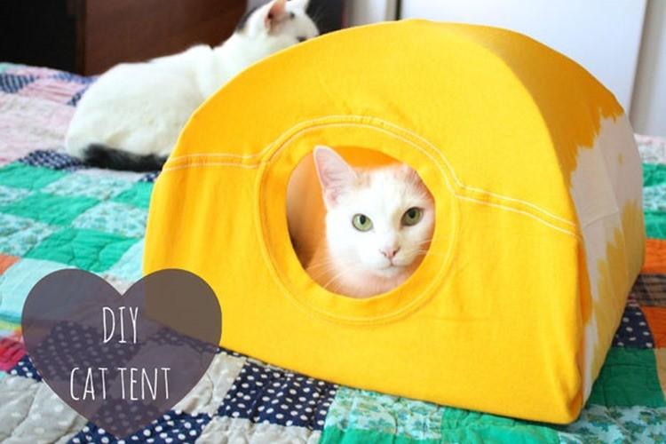 いらなくなったTシャツを猫用テントにしちゃうニャン♪