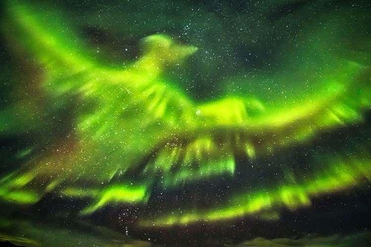 不死鳥が天を舞う!?アイスランドで観測されたオーロラが美しすぎる