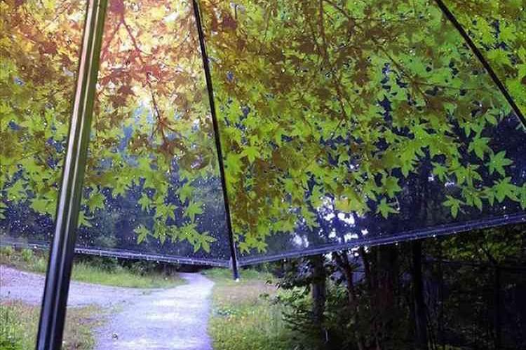 """見上げると森の中にいる感じ!""""木漏れ日を持ち歩く傘""""が素敵だと話題に!"""