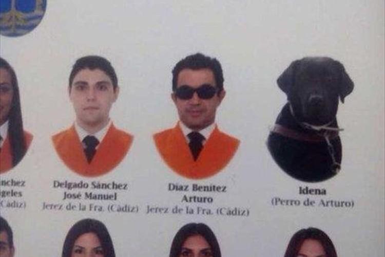 学生と一緒に盲導犬の写真…とある大学の卒業アルバムのエピソードに涙