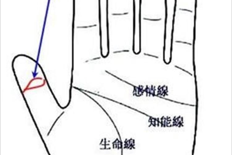 左手親指に注目!「仏眼の相」は神仏の加護に恵まれた吉相!霊感も強い!?