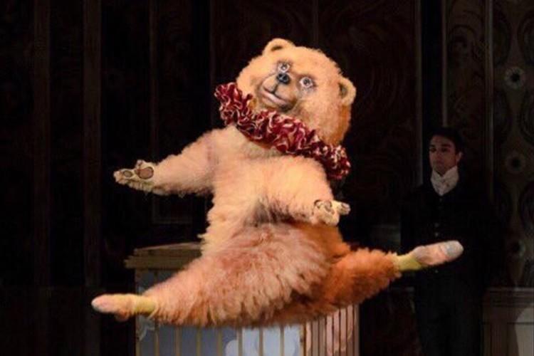 """キレッキレにもほどがある!""""ボストン・バレエ団のクマ""""が、クマの動きではない"""