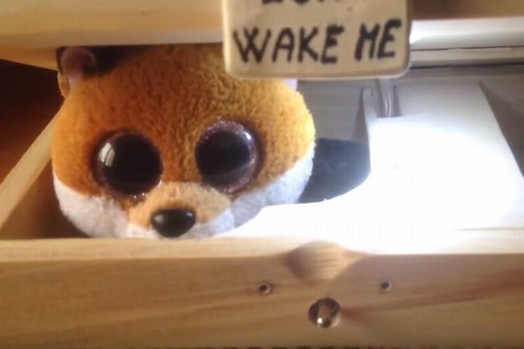 「絶対に起こさないでね!」起こそうとすると全力でOFFにするおもちゃが面白い!