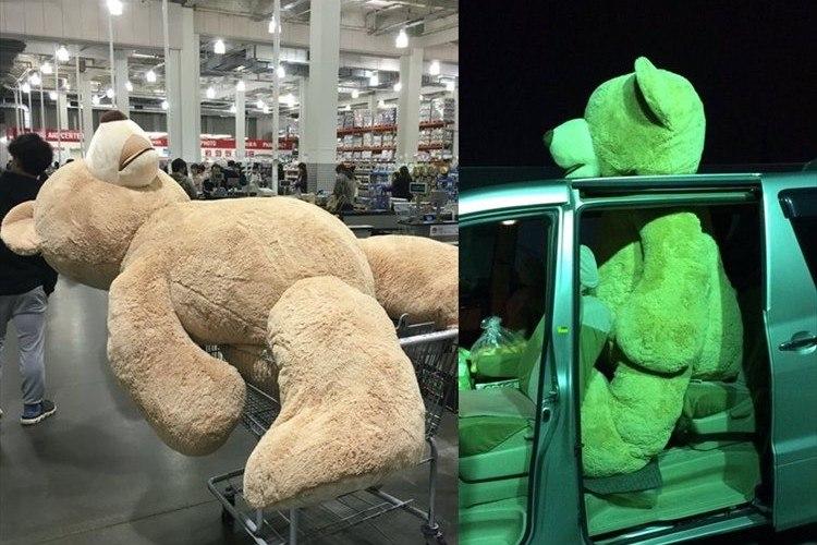 「運ぶ方法がこれしかありませんでした」コストコで買ったクマの存在感が話題に!