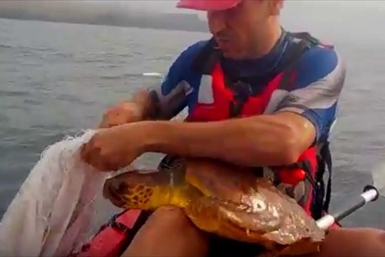 【動画】網が絡まり苦しそうなウミガメ…心優しい男性が救助し無事に海へ戻る!