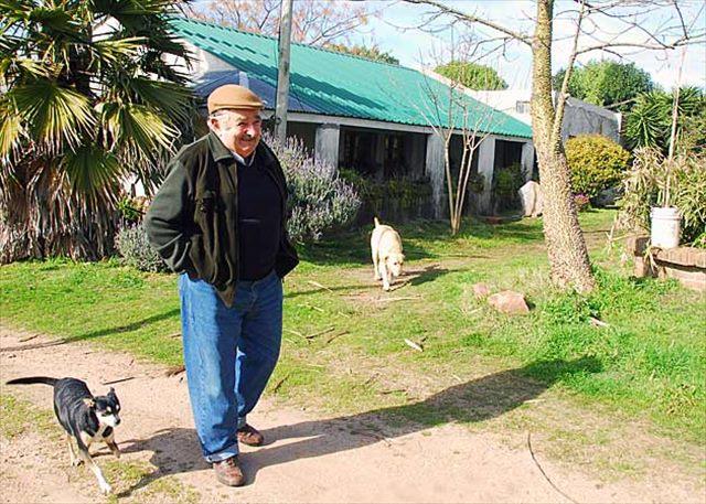 mujica-dog-farm_R