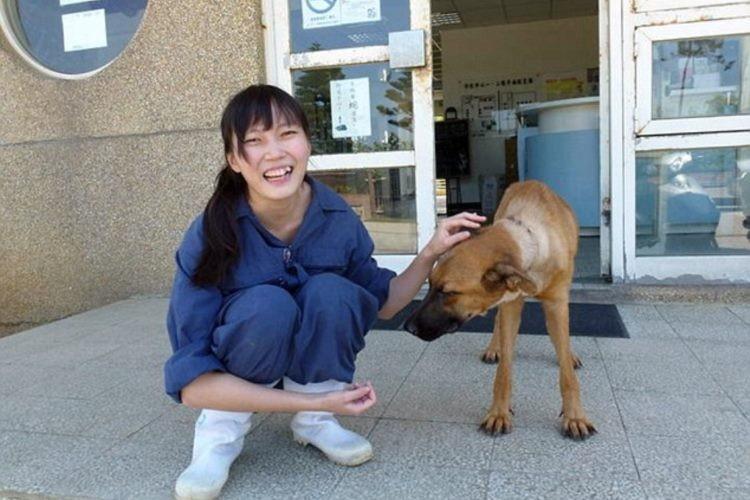 動物保護施設職員が安楽死に耐え兼ねて自殺。あまりにも悲しい結末