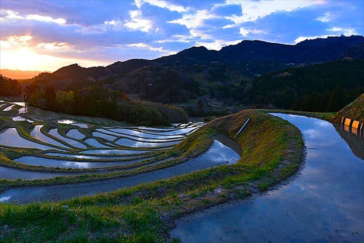 東京から一番近い棚田、「大山千枚田」の雄大な美しさに酔いしれる【都心から2H】