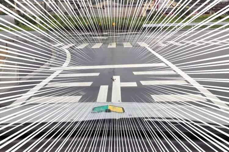 これは停止せざるを得ない!勇敢なザリガニが道路の真ん中で何かを訴える