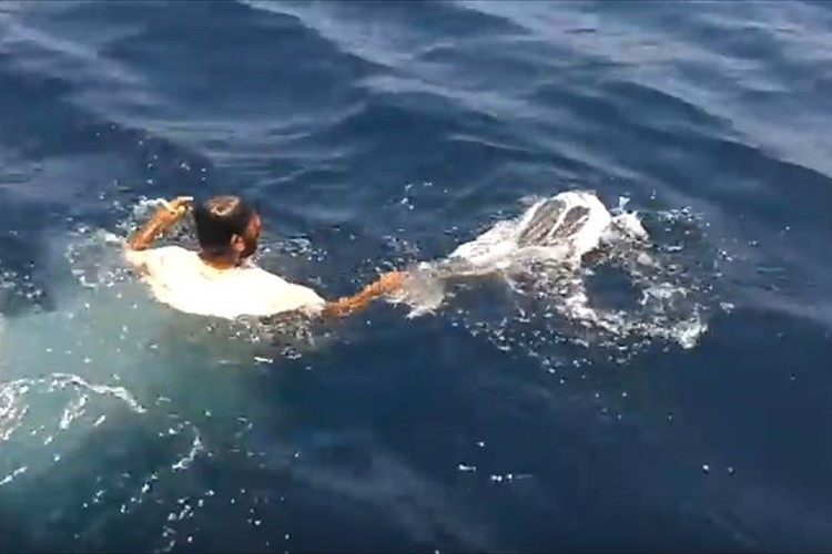 ポリ袋に閉じ込められたウミガメを救出! 迷わず海に飛び込んだ漁師に称賛の声