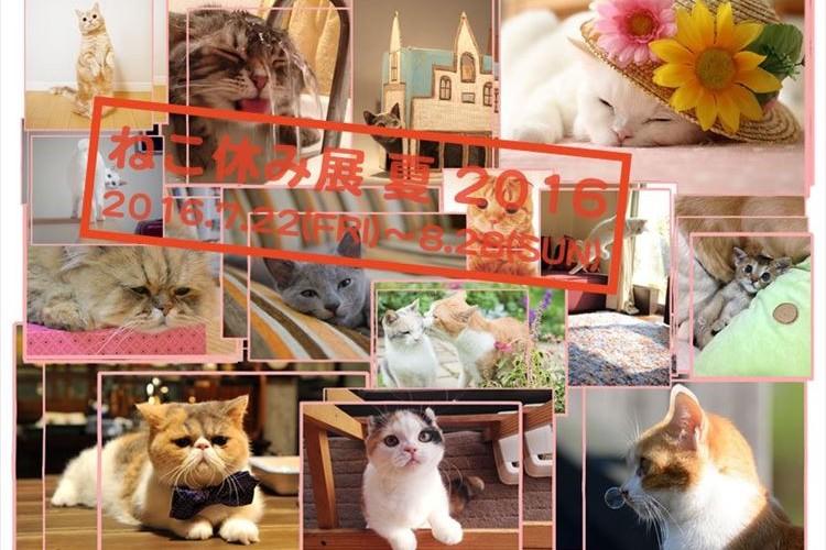 マンチカンのぷーちゃんも参加!!猫の祭典「ねこ休み展」が東京に現る!