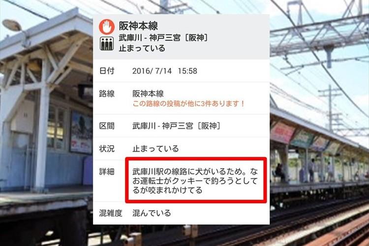 """阪神本線の遅延理由 その""""詳細が詳細すぎる""""と話題に! 運転士さんはその後!?"""
