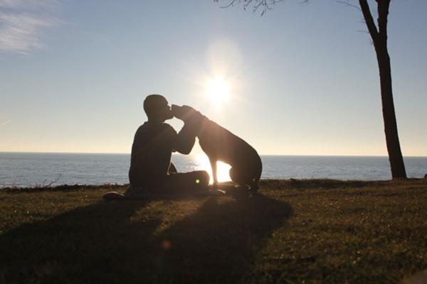 dog-cancer-road-trip-bella-robert-kugler-10r