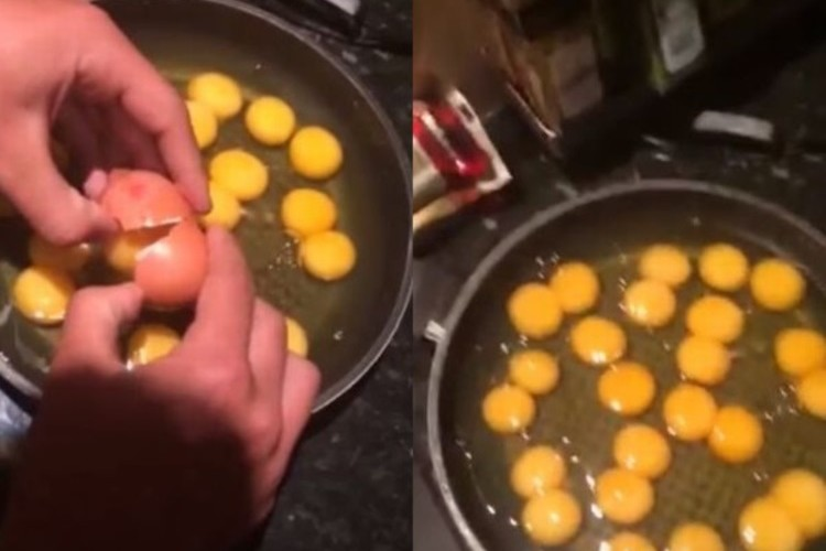 【奇跡】1000個に1個の双子卵が12個連続で出た瞬間!天文学的な確率が実際に起きた映像