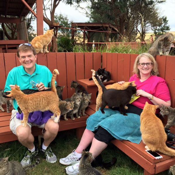 lanai-cat-sanctuary-hawaii-21r