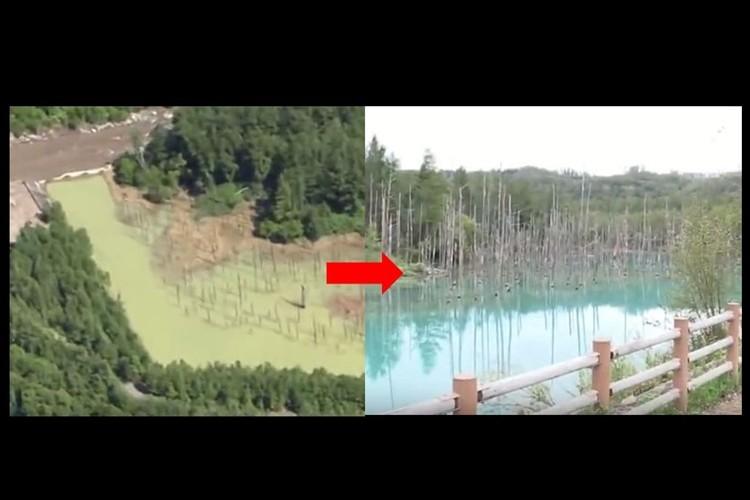 「自然の復元力は凄い」台風の被害受けた北海道の名所「青い池」に青が戻った!